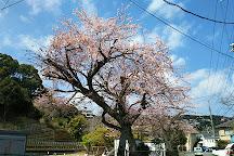 Ito Park, Ito, Japan