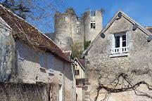 Chateau de Montresor, Montresor, France