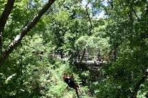 Wildwood Adventure Park, Manhattan, United States