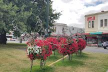 Sturt Street Gardens, Ballarat, Australia