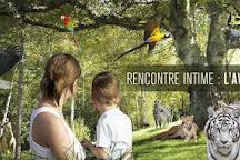 Zoo Parc des felins, les Trois Vallees, Montredon-Labessonnie, France