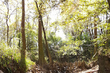 Bogue Chitto State Park, Franklinton, United States
