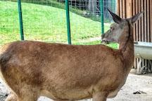 Parc Animalier de la Grande-Jeanne, Annecy, France