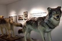 Le Musee du Loup, Le Cloitre-Saint-Thegonnec, France