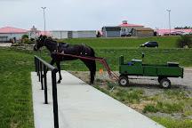 Walnut Creek Amish Flea Market, Sugarcreek, United States