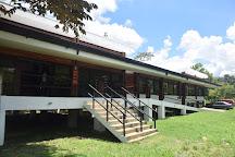 El Sitio Museo Finca 6, Palmar Norte, Costa Rica