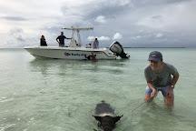 Da Salty Pig Adventures, Spanish Wells, Bahamas