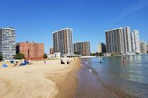 Kathy Osterman Beach, Chicago, United States