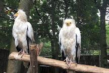 Limpopo Zoo, Nizhny Novgorod, Russia