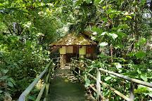 Tham Khao Plu Hot Spring, Lamae, Thailand