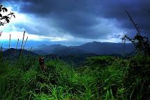 Maes Pura Vida, Tamarindo, Costa Rica