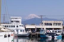 Numazu Minato Shinsenkan, Numazu, Japan