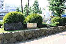 Sagamihara City Hall Sakura Street, Sagamihara, Japan