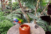Klein Costa Rica, Someren, The Netherlands