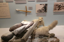The Polar Museum (Polarmuseet), Tromso, Norway