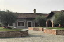 Azienda Agricola Negro Angelo & Figli, Monteu Roero, Italy