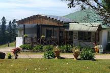 Mungalli Creek Dairy Farm, Millaa Millaa, Australia
