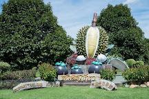 Suphattra Land, Ban Khai, Thailand