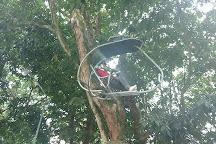 Zip Coaster, Quepos, Costa Rica