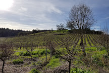 Porter Creek Vineyards, Healdsburg, United States