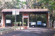Bosque Municipal Rangel Pietraroia, Marilia, Brazil