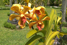 Bali Orchid Garden, Denpasar, Indonesia