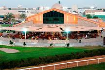 Abu Dhabi City Golf Club, Abu Dhabi, United Arab Emirates