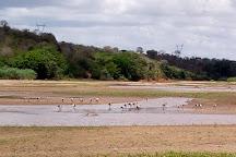 Malindi Museum, Malindi, Kenya
