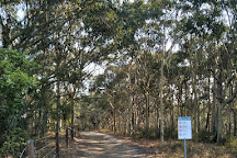 Crackneck Lookout Coast Walk, Bateau Bay, Australia