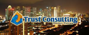 Trust Cargo Consulting 5