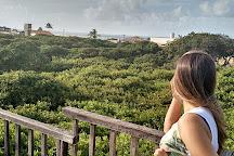 Cajueiro de Pirangi, Pirangi do Norte, Brazil