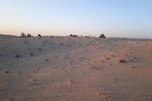 The Desert Ranch, Dubai, United Arab Emirates