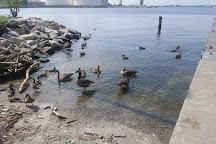 Canton Waterfront Park, Baltimore, United States