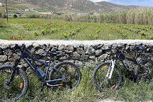 YUMMY PEDALS - Mykonos bicycle tours, Ano Mera, Greece