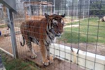 Greater Wynnewood Exotic Animal Park, Wynnewood, United States