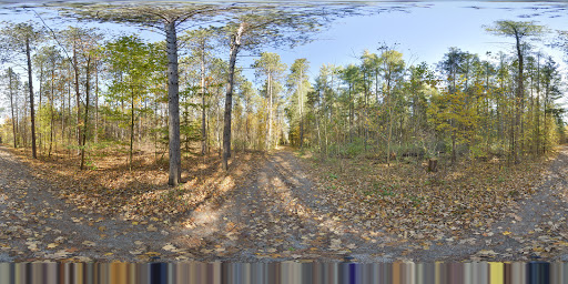 North Tract - York Regional Forest | Toronto Google Business View