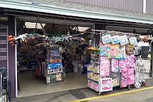 Mile High Flea Market, Henderson, United States