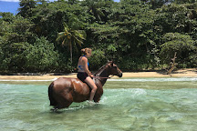 Caribe Horse Riding Club, Cocles, Costa Rica