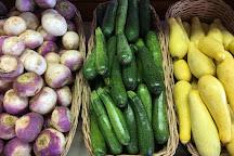 Orr's Farm Market, Martinsburg, United States