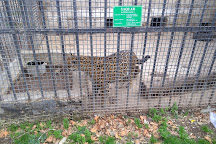 Baku Zoo, Baku, Azerbaijan