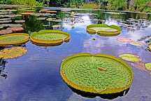 Naples Botanical Garden, Naples, United States