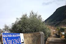 Azienda Agricola Virgona, Malfa, Italy