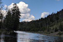 Madison River, Yellowstone National Park, United States