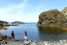Bottle Cove Beach, Lark Harbour, Canada