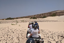 Giggling Gecko Adventures Day Tours, Sal Rei, Cape Verde