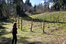 Trillium Creek Winery, Lakebay, United States