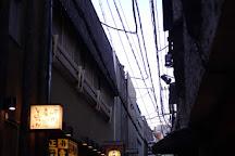 Hozenji Yokocho, Osaka, Japan