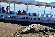 Jungle Crocodile Safari, Tarcoles, Costa Rica