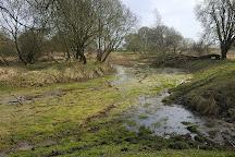 Natuurgebied Dintelse Gorzen, De Heen, The Netherlands