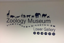 University of Aberdeen Zoology Museum, Aberdeen, United Kingdom